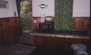 microwave in treehouse