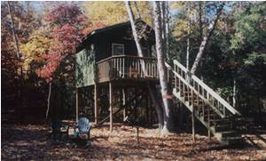 Sycamore Treehouse